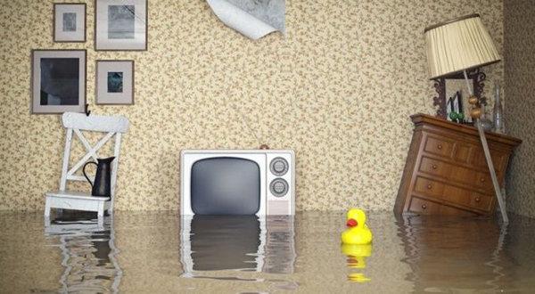 Образец акта осмотра квартиры после залива: последствия затопления и обследование